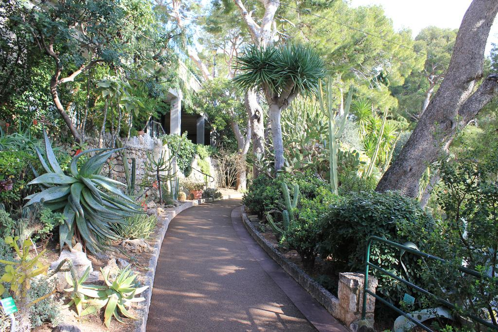 Saint-Martin Gardens Free things to do in Monaco